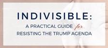 Stop Trump, Indivisible, Guide
